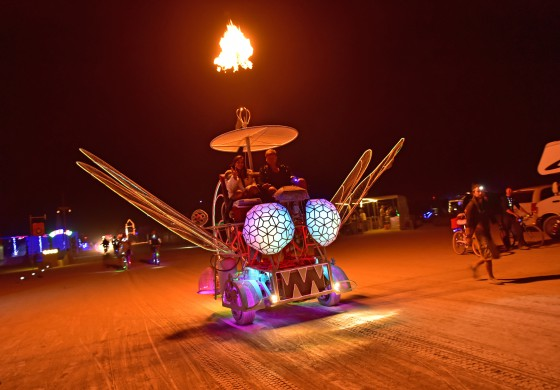 Burning Man 15