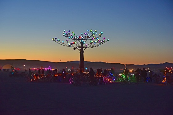 Burning Man 17